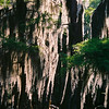 23 - Caddo Lake-2, TX