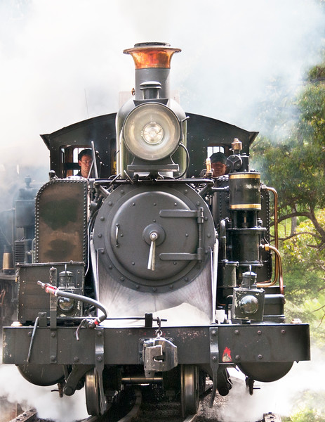 Puffing Billy, The Dandenongs