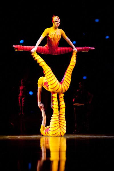 Cirque du Soleil | Ovo