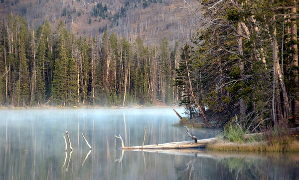 Yellowstone National Park, Wyoming,