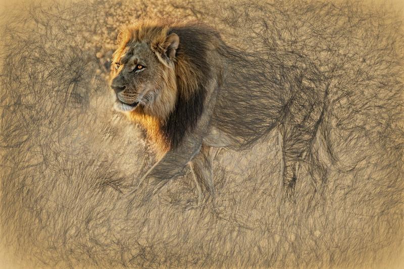 The King Stalks