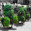 Bicycles in Uganda