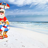 Santa Claus Lifeguard