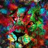 High Intensity Lion