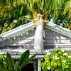 Warrior Angel in Key West