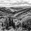 Mountains of the Smoky Mountains in Black and White
