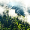 The Misty Smoky Mountains