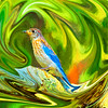 Swirling Bluebird Abstract