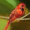 Artsy Cardinal