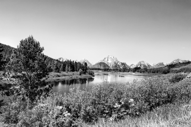 Oxbow Bend, Grand Teton National Park in Black and White