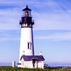 Yaquina Head's Lighthouse Shore, Oregon
