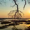 River Sunset In Botswana