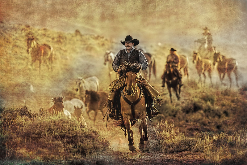 A Dusty Wyoming Wrangle
