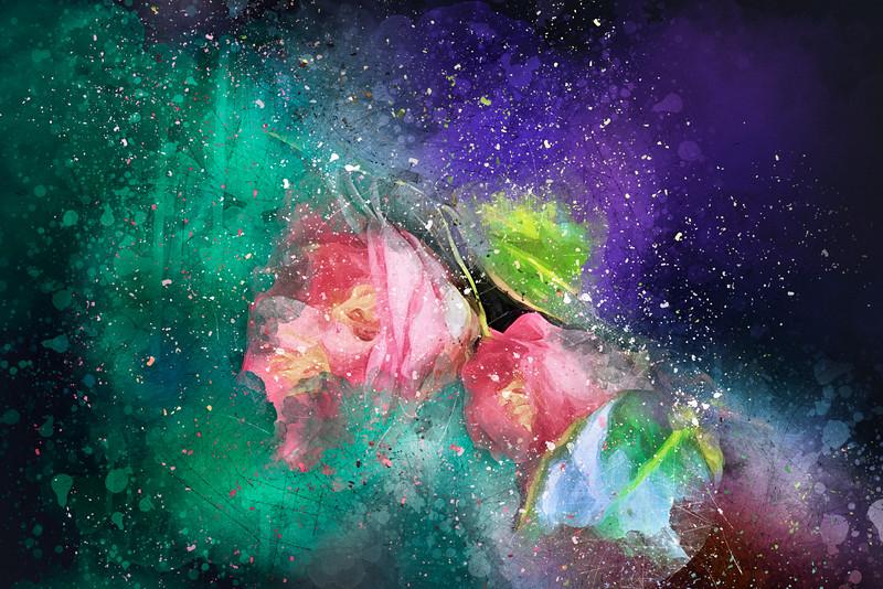 Camellias In A Galaxy Far Far Away