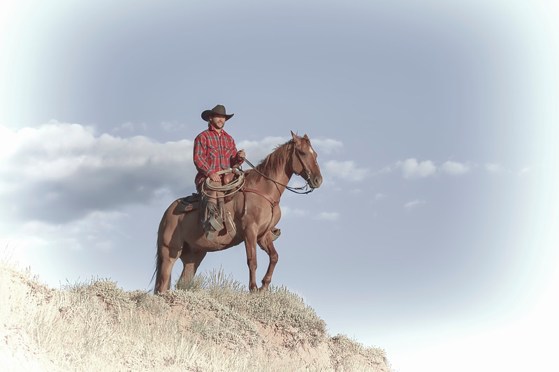 A Wyoming Cowboy in White Chocolate