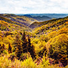 Autumn Colors in the Smokies