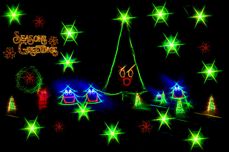 Dancing Christmas Trees Seasons Greeting
