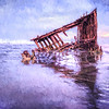 The Peter Iredale as Art