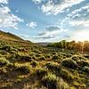 Absaroka Mountains Sunrise