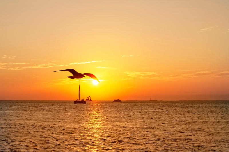 The Famous Key West Sunset