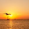The Famous Key West Sunset