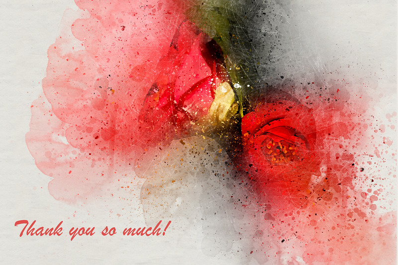 Thank You With Two Camellias