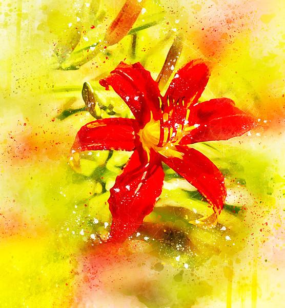 Embellished Lily
