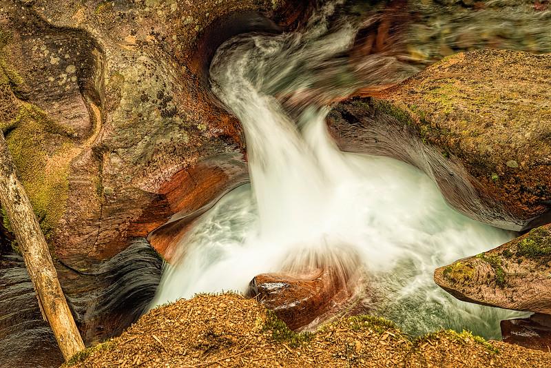Glacier National Park's Avalanche Gorge