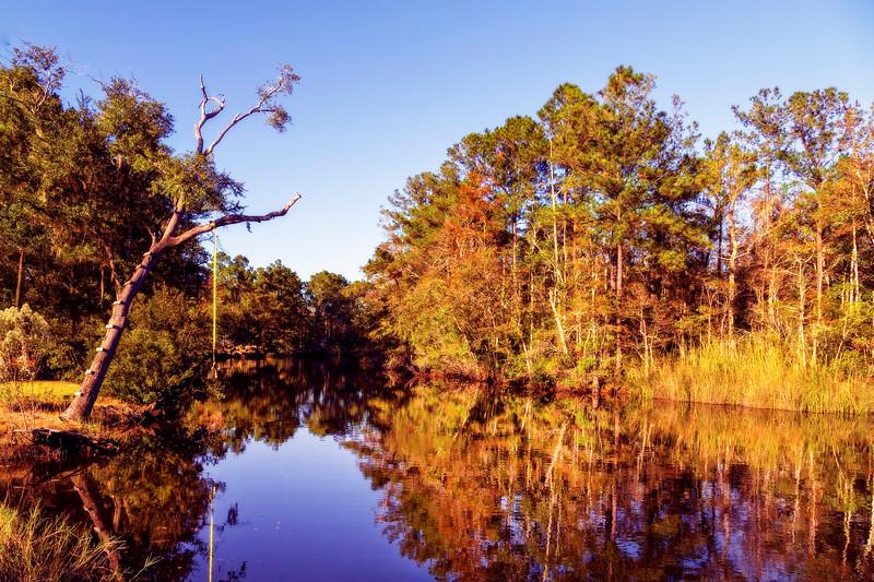 Autumn On the Bayou