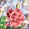 Pink Rose with Two Buds Art