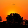 Sunset over Botswana