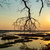 River Sunset In Botswana