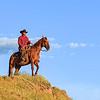 A Wyoming Cowboy