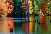 NH 1996 rainbow reflections