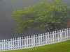 TX 2016/10 Foggy morning fence