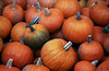 VT 1987 pumpkins