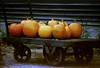 ME 1987 pumpkin truck