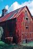 VT 1987 Joe's Pond vine on derelict barn