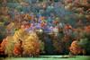VT 1987 fading autumn colors