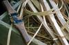 1986 AR Basket weavers materials