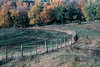 1980 KS 3-Fence scene in fall