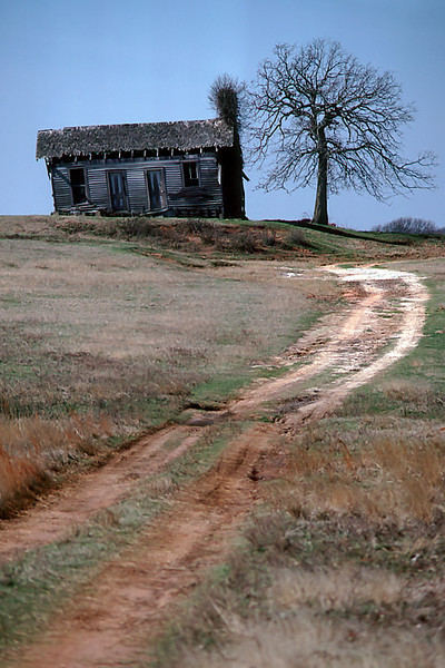 1989 OK Shack,  tree and dirt road