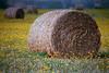 1987 TX Brenham Hay rolls