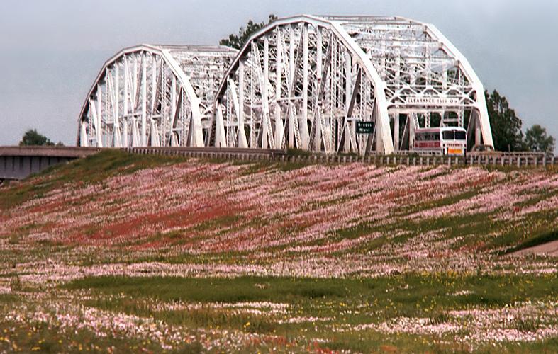 1975 TX Brazos River bridge, bus and wildflowers