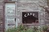 TX Washington County Old cafe window and lantana