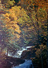 1987 VT Autumn leaves and stream