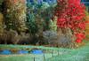 1987 VT Autumn colors and pond