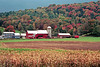 1987 VT Autumn field