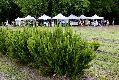 2008 Lavender Festival