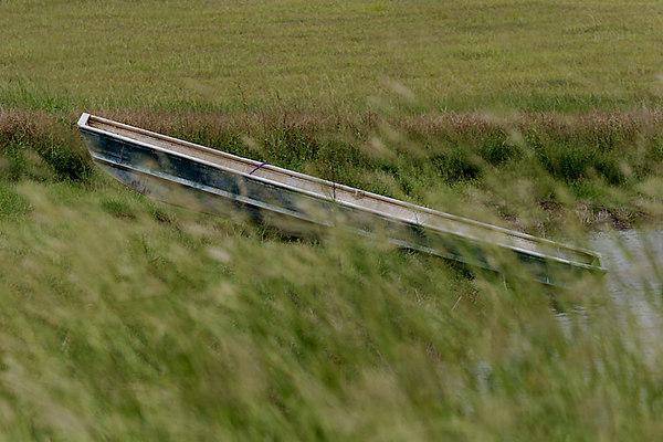 CHLF Boat in Grasses